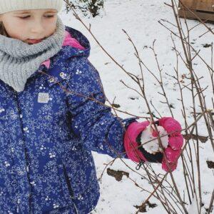 """Aktuelles """"Vogelfutter"""" - Mädchen hängt das selbst gebastelte Vogelfutter in den Busch"""