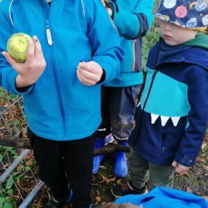"""Aktuelles """"Problemlösefähigkeit"""" - Ein Kind hält einen Ball in der Hand."""